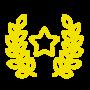 cert yellow 4